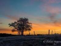 Solstice d'hiver au Creux-du-Van