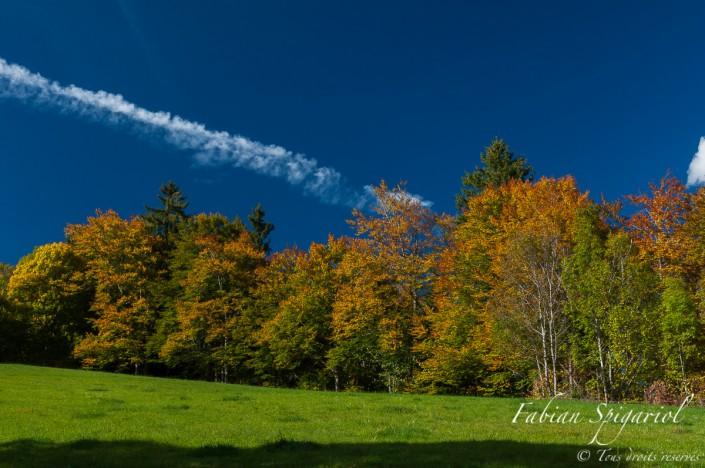 Les couleurs automnales égaient les forêts au-dessus de Plancemont, dans le Val-de-Travers.