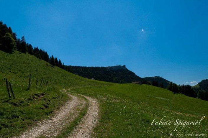 Vue estivale de la face nord du Chasseron avec au premier plan le chemin blanc menant aux Roches éboulées.
