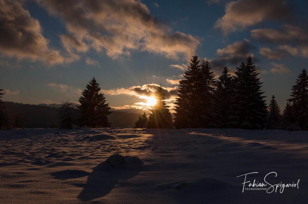 Coucher de soleil hivernal sur les hauteurs des Bayards, aux confins du Val-de-Travers