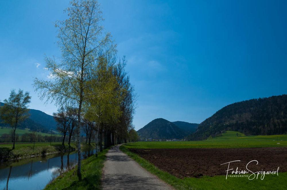 Le Val-de-Travers n'est pas la vallée reculée et austère que beaucoup imagine... Cette photo pour prouver qu'il s'agit d'un endroit magnifique.