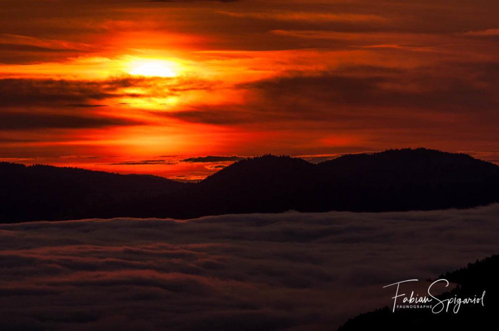 Il fallait prendre de l'altitude pour admirer le tableau coloré peint par le ciel ce matin là...